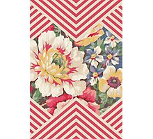 Candy Floral Chevron Photographic Print
