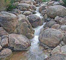 Waterfall, Kings Park, Perth, WA by Adrian Paul