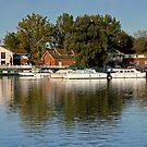 billing lake marina by cynthiab