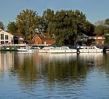 billing lake marina by cynthiab