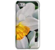 Translucense iPhone Case/Skin