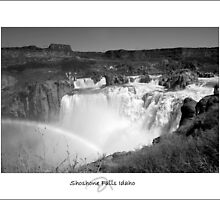 Shoshone Falls by DebraTrean
