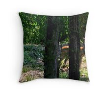 Concealed Am I Throw Pillow