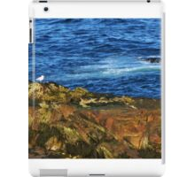 Same Guy, Less Feet ~ Gloucester, Massachusetts iPad Case/Skin