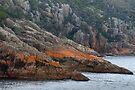 Freycinet Coastline 3 by Werner Padarin