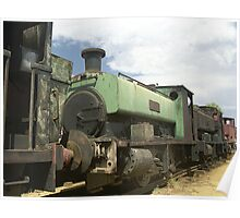 Row of old trains - Dorrigo Steam Railway & Museum Poster