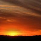 Sierra Sunset by NancyC