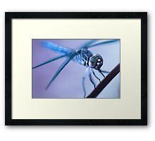 Alien Dragonfly Framed Print