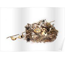 Leaving the Nest Poster