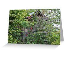 Old Barn Behind Trees Greeting Card