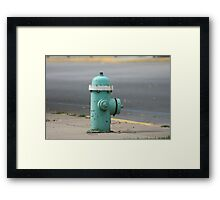 The Hydrant Framed Print