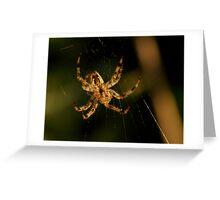 spider spider Greeting Card