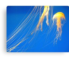 Saltwater Taffy Canvas Print