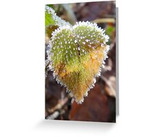 Colorful heartshaped leaf with frost Greeting Card