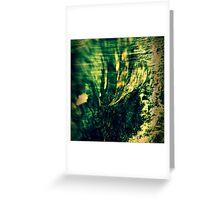 Wood + Ocean Greeting Card