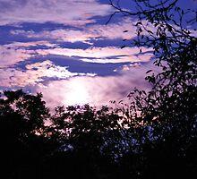 Turbulence by LavenderMoon