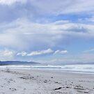 lovely white sand beach at Bicheno, Tasmania by gaylene