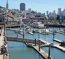 Fisherman's Wharf Partial View by longaray2