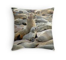 aloof Throw Pillow