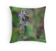 Bumblebee on Pickeral Weed II Throw Pillow