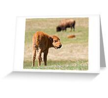Cinnamon Baby Greeting Card