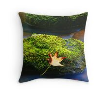 MOSSY ROCKS AND LEAF Throw Pillow