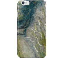 Tributaries iPhone Case/Skin