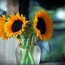 sunflowers by colleen e scott