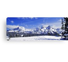 Beautiful Tatoosh Mountain Range Canvas Print