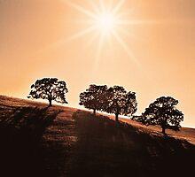 Rays Of Light by BluAlien
