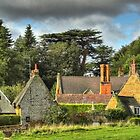 Harlestone Village by SimplyScene