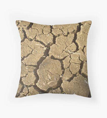 Crack-up!! Throw Pillow