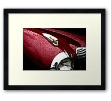 Droplets on Lincoln Framed Print