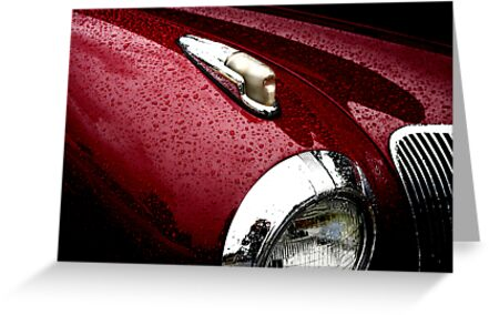 Droplets on Lincoln by starlitewonder