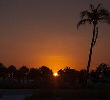 Hail The New Day!  by John  Kapusta