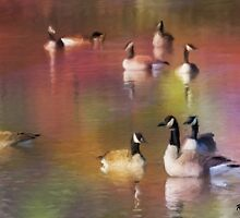 Dreamy Canada Geese by KatMagic Photography