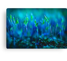...blues in green... Canvas Print