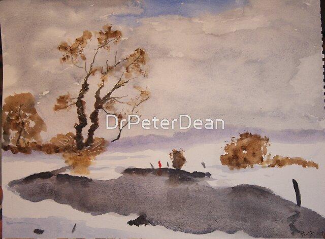 Snow Scene  by DrPeterDean