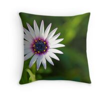 Dazzling Daisy Throw Pillow