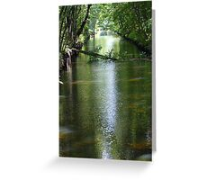 Blackstone River Canal. Greeting Card