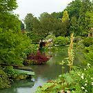 Sandringham Estate, Norfolk by SusanAdey