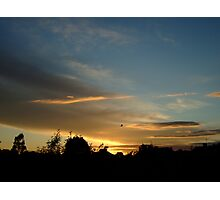 Summer Sunset in a London Suburb (1) Photographic Print