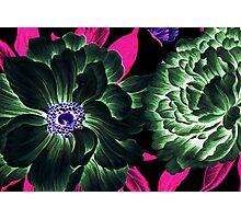 Etheral Floral Photographic Print