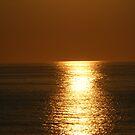 golden seas by Amanda320