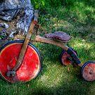 Old Wooden Trike by Larry Trupp