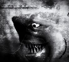 ©DA Shark IA Monochromatic by OmarHernandez