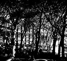 Study in Shadows, Bryant Park by Matt Ravick