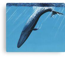 Diving Blue Canvas Print