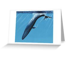 Diving Blue Greeting Card