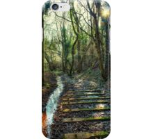 Puddles on the Tracks iPhone Case/Skin